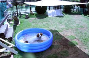 Pool03s_3